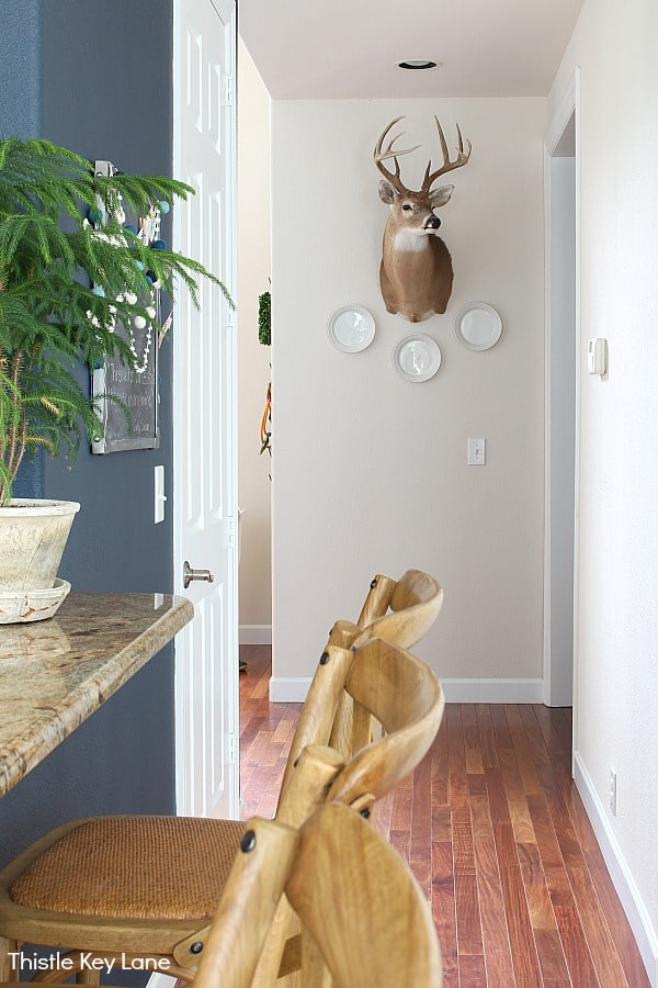 Hallway with deer head and white plates - Ideas For Decorating With Plates.