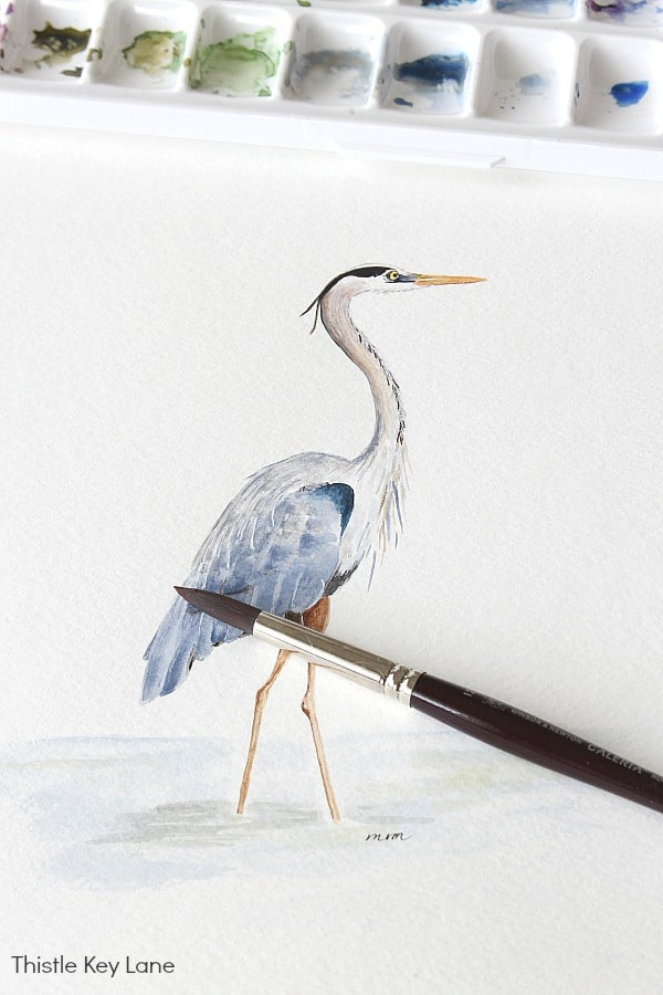 Heron Watercolor facing left.