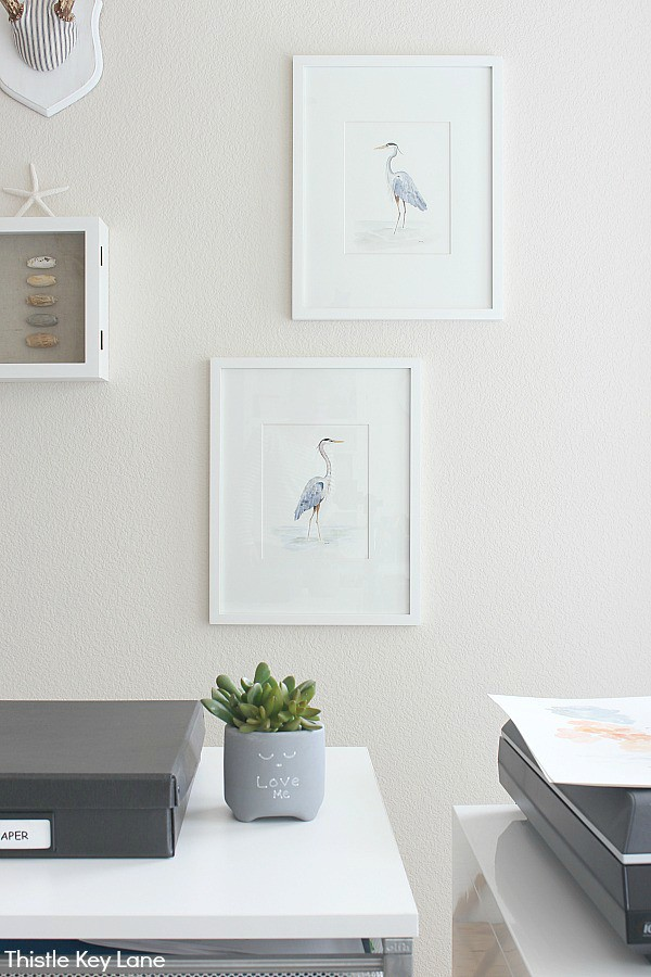Heron watercolors in white mats and frames.