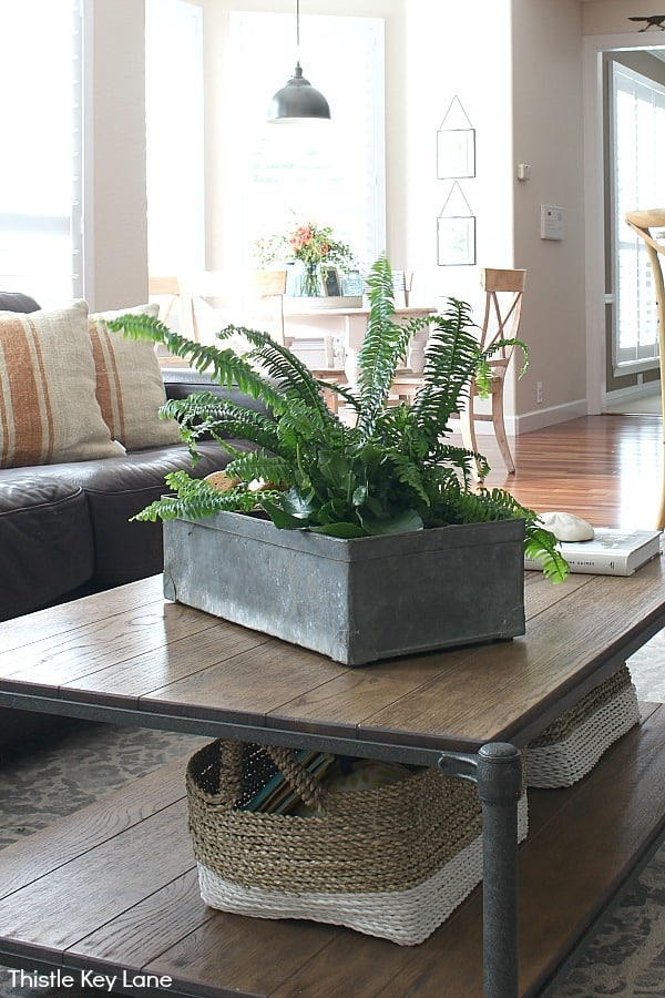 Coffee table decorating with vintage zinc container - Simple Summer Home Decorating Tour.