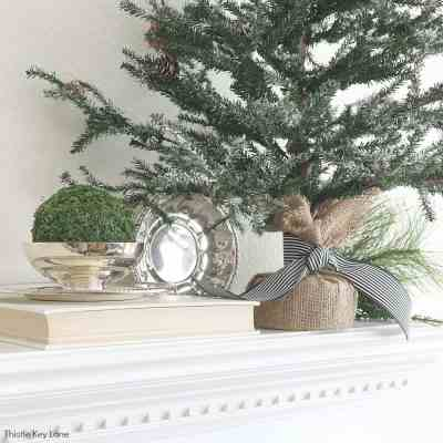 Transitioning From Holiday To Winter Decor