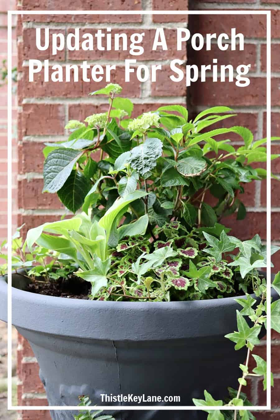 Updating A Porch Planter For Spring
