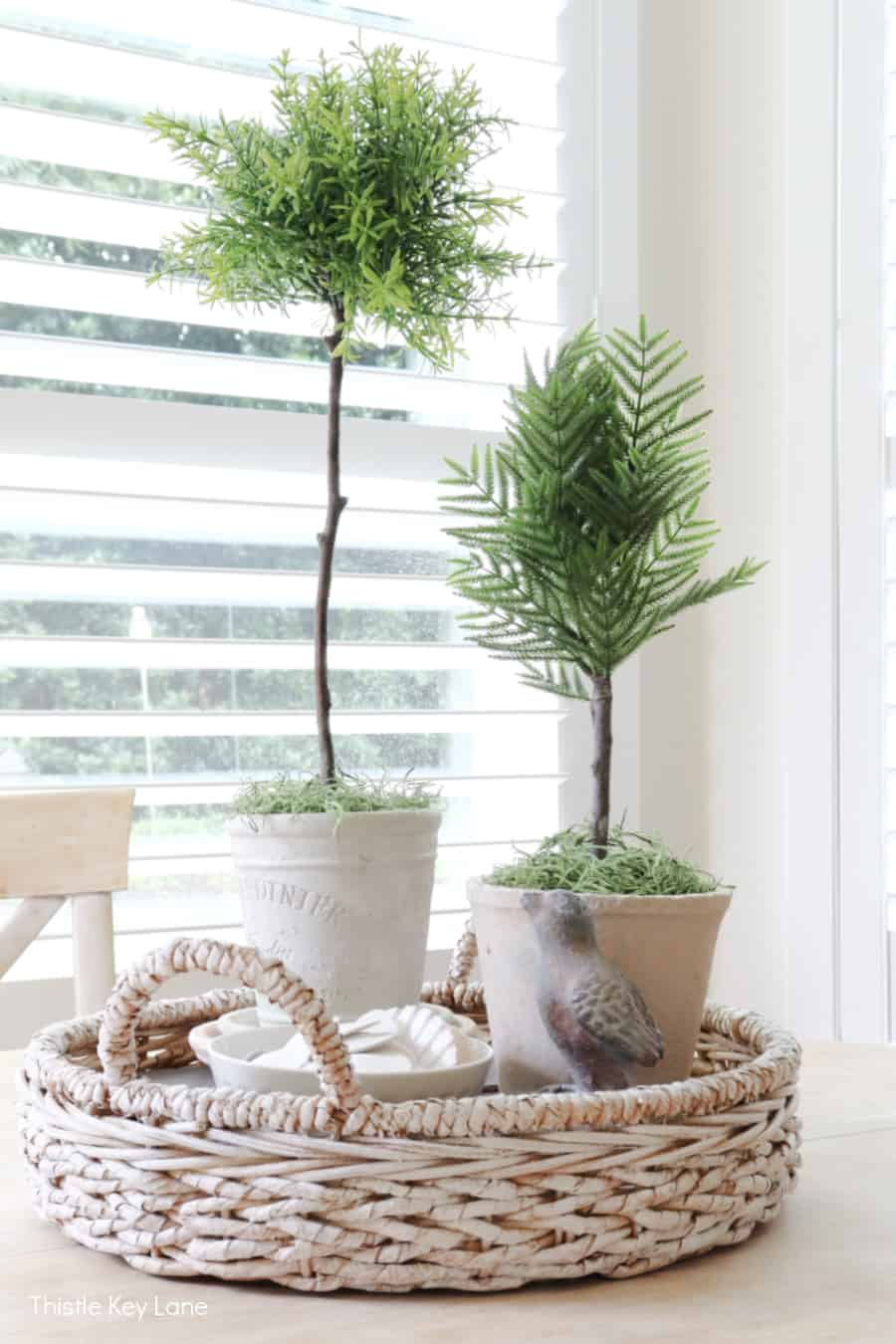 Two topiaries sitting in a tray. How To Create A Faux Topiary.