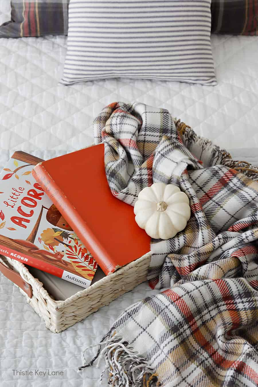 Fall plaid throw, a white pumpkin and children's books on a tray. Simple Fall Bedroom Ideas.