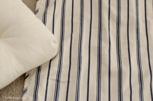 Pottery Barn Euro Sham front with wide stripe