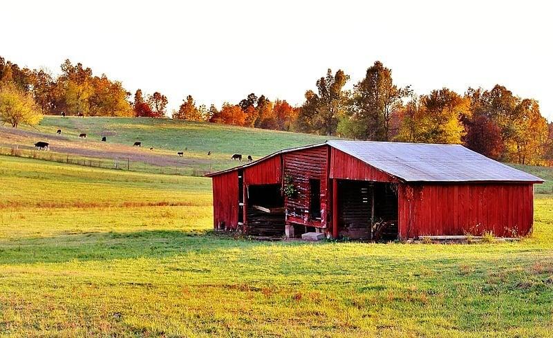 fall-decorating-barn.jpg