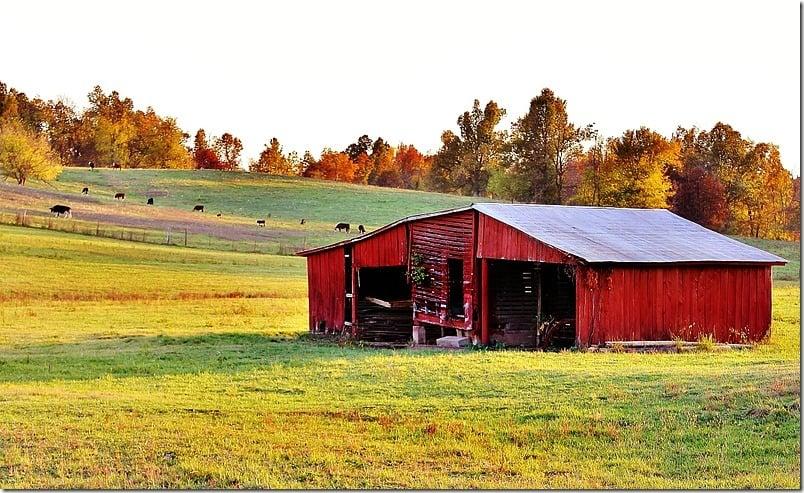 fall-decorating-barn
