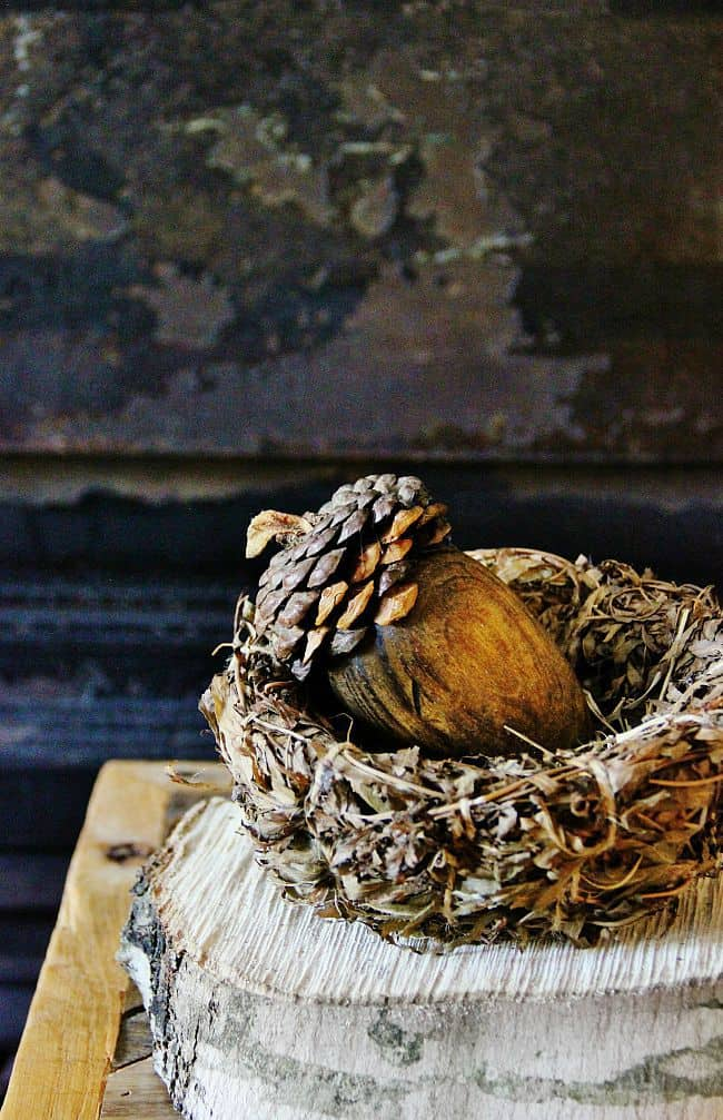 Acorn DIY Project How To