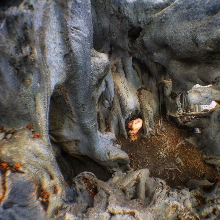 fish-eye-inside-holboom-sq-treegirl-tkaweb-150dpi