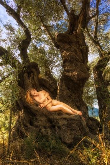 paliama-olive-rapture-treegirl-tkaweb