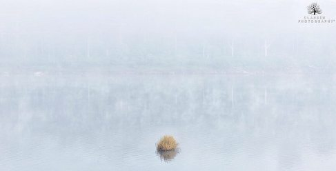 5 - Jannik - Misty Morning