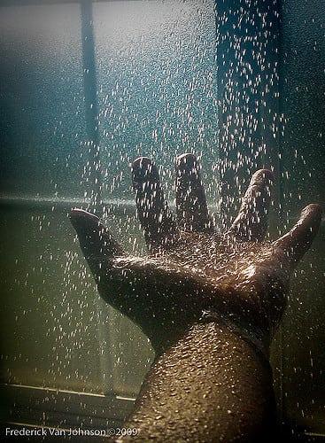 ©Frederick Van Johnson - Wet Hand