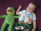with his best buddy Kermit