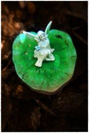 Fairy Sighting