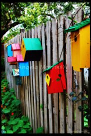 Fence of Bird Houses