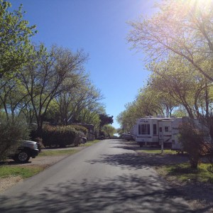 Our Austin campground, found and booked for half price with Passport America