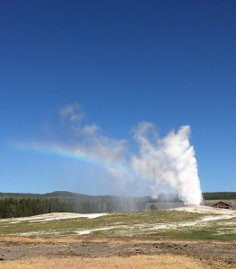 A rainbow at Old Faithful