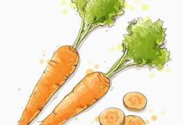 Cắt cà rốt thành miếng à? 2019 6