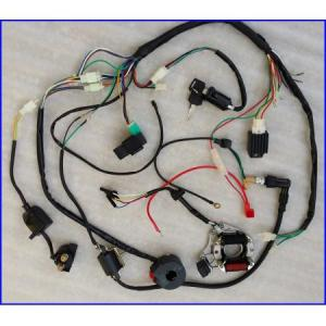 Full Electrics Wiring Harness Coil CDI 50CC70110CC ATV Quad Bike Buggy Go kart | eBay