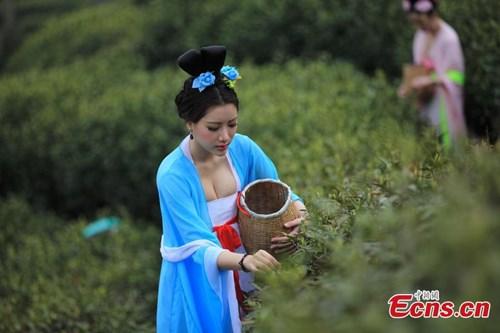 Được biết, đây là hoạt động được tổ chức nhằm mục đích tuyên truyền và quảng bá cho văn hóa uống trà.