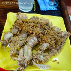 Be Be - Mantis Shrimps