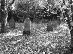 Jüdischer Friedhof Dalsheim - 01
