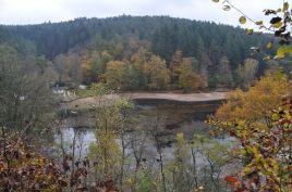 Eiswoog Pfälzerwald - 31