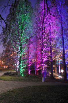 Winterlichter im Luisenpark - 02
