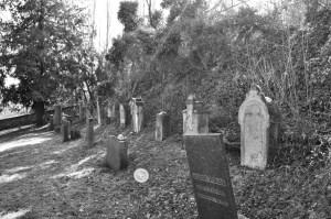 Jüdische Friedhof Albisheim
