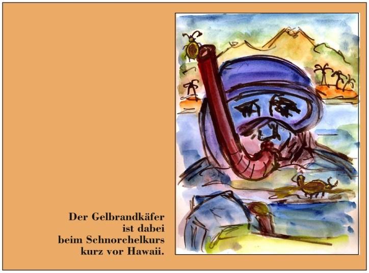 Hagedorn22-Der Gelbrandkaefer