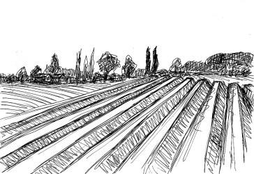 MittelSk9 Beelitz Spargelfelder