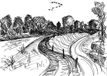 OderSk1 Oderdeich bei Kienitz