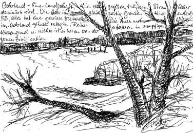 OderSk7 Uferlandschaft bei Lebus