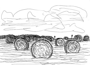 Picardie3-Felder bei Audighen1