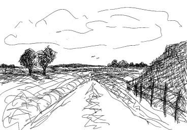 RuppinSk8 Rhinluch-Landschaft mit Sumpf