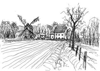 SpreeSk3 Kohlsdorf-Felderlandschaft