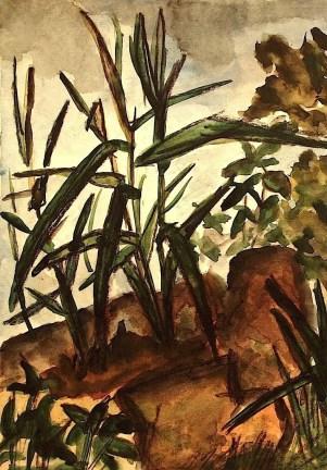 TELTOW1_Grasstueck