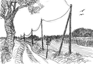 Wittow31-Feldweg bei Nobbin