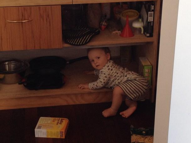 organising kitchen