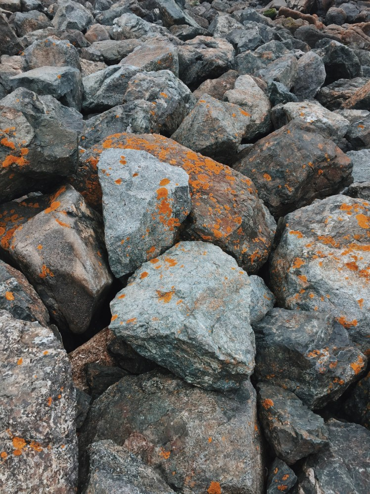 Close-up Of Rocks In Mousehole Cornwall