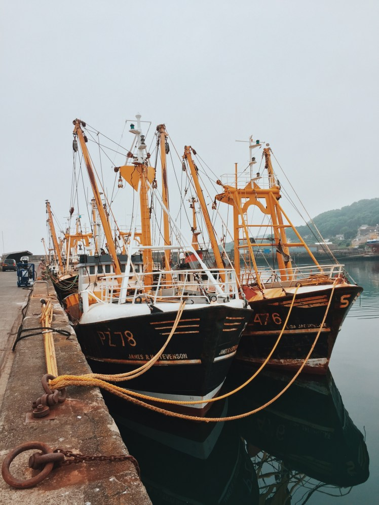 Two large yellow, white and black fishing boats docked side by side in Newlyn harbour