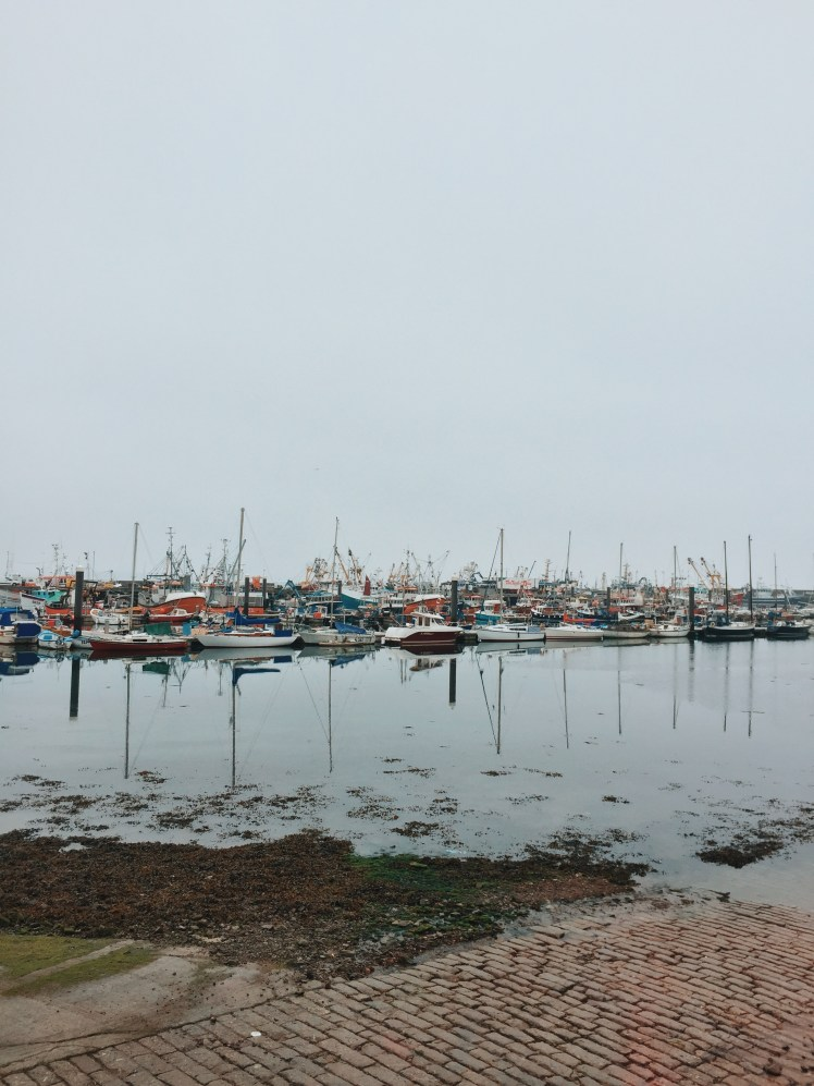 Newlyn harbour with a collection of fishing boats of all colours and sizes
