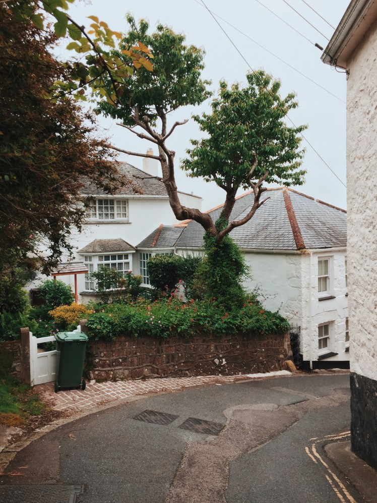 A small property with a garden down a winding side street from Orchard Cottage towards the harbour in Newlyn