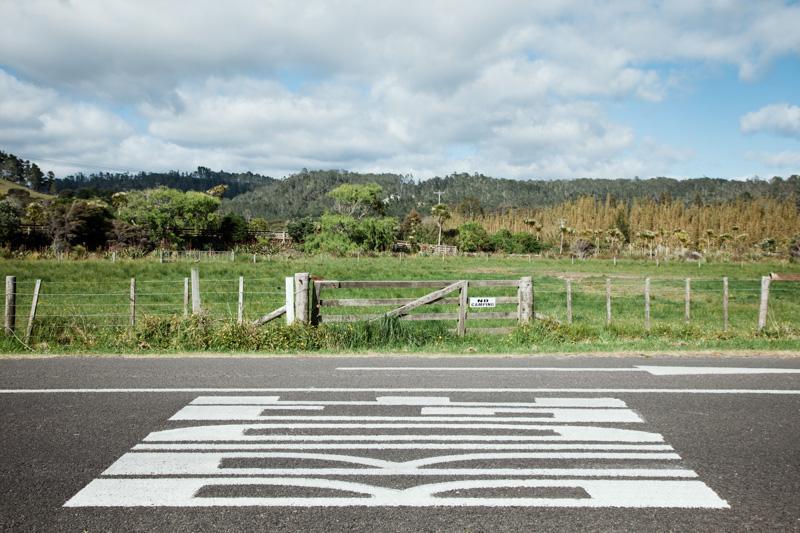 nouvelle-zelande : péninsule de coromandel