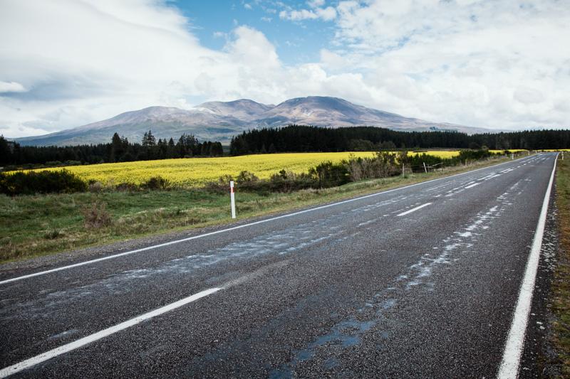 nouvelle-zelande : togariro