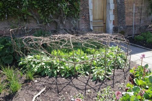 img 0895 Cliveden, a garden visit, part 1