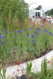 img 1466 Hampton Court Flower Show a world of flowers