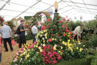 img 1473 Hampton Court Flower Show a world of flowers