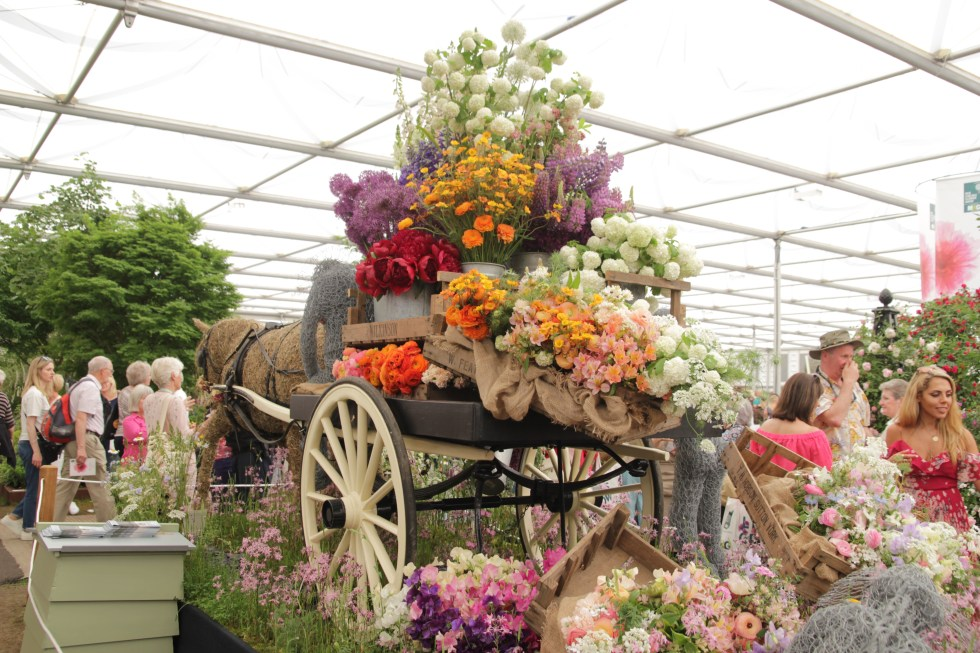 img 5388 RHS Chelsea flower show, delights of the trades