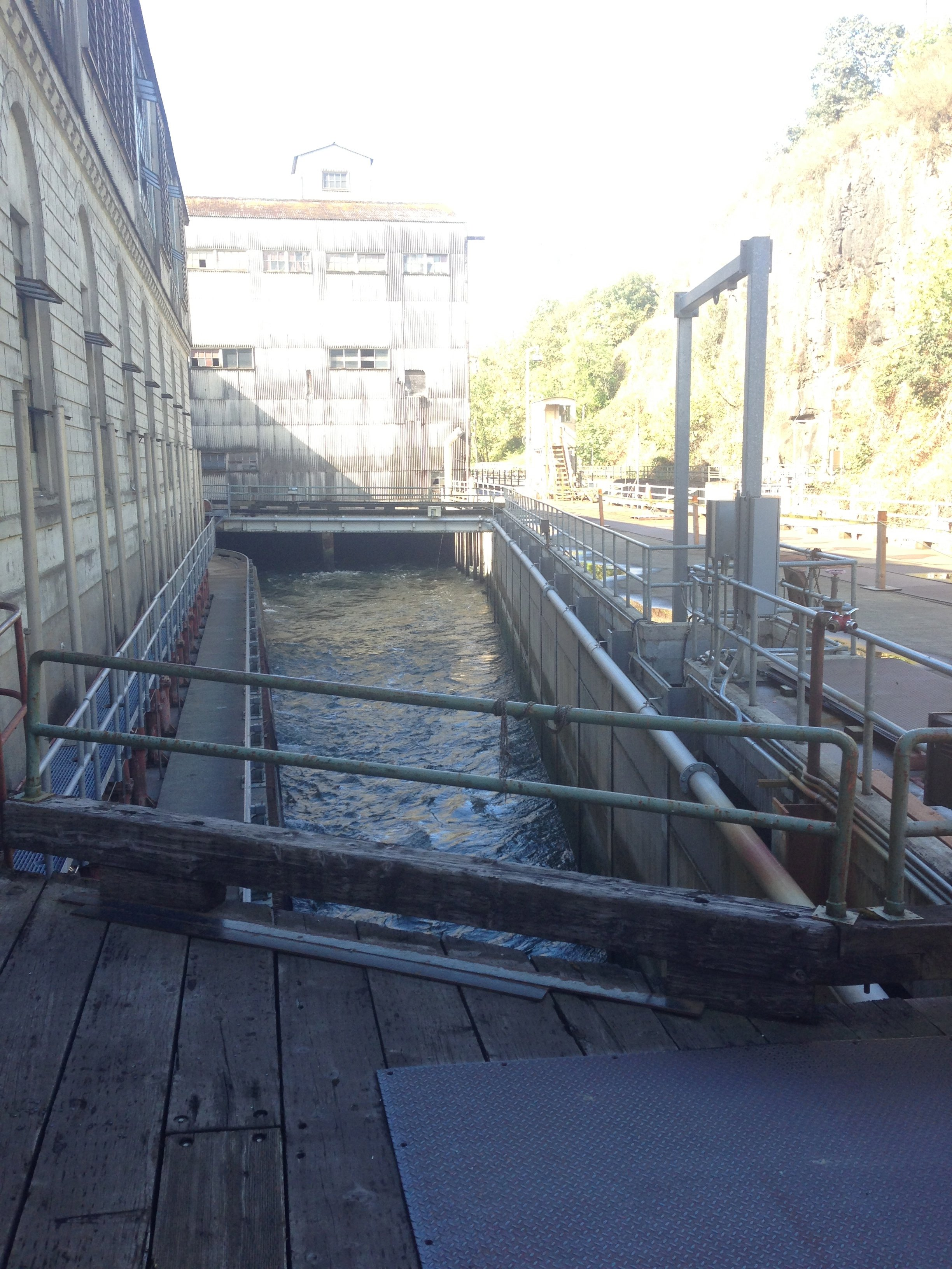 Upper part of fish ladder
